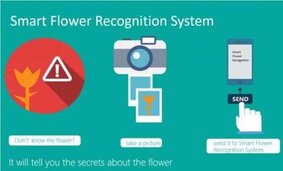 Microsoft lässt Blumen sprechen